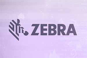 Zebra Etiketten Drucken