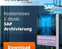 SAP Datenarchivierung E-Book