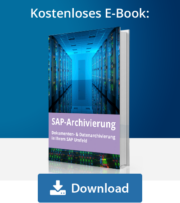 E-Book SAP Archivierung