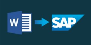 Word-SAP-PDF-1