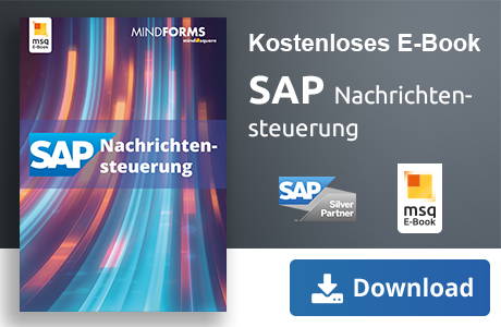 SAP Customizing